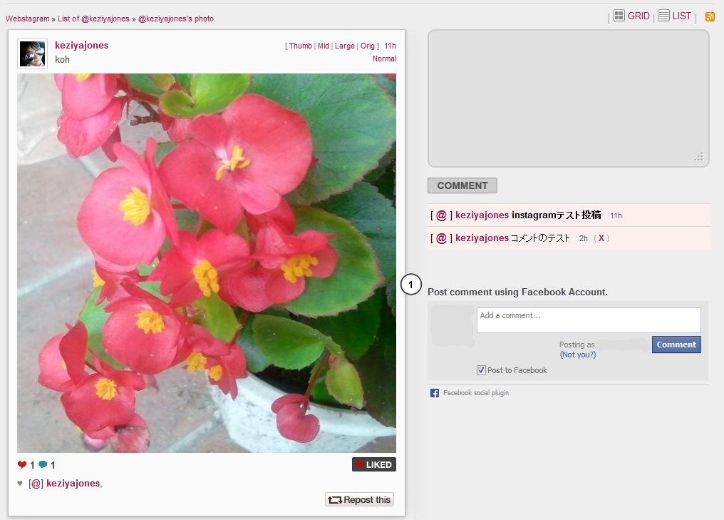 Webstagram editのスクリーンショット