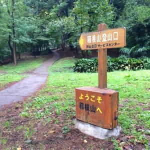 新宿戸山公園 箱根山登山口
