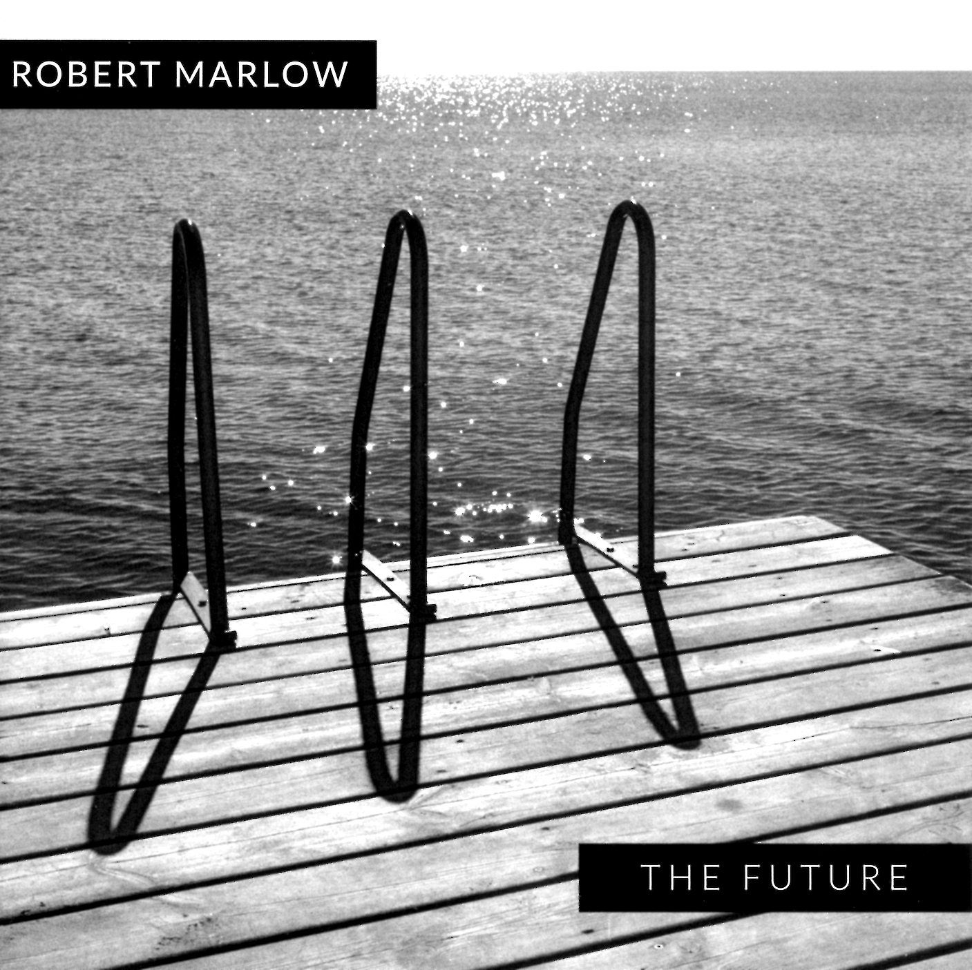 The Future_Robert Marlow