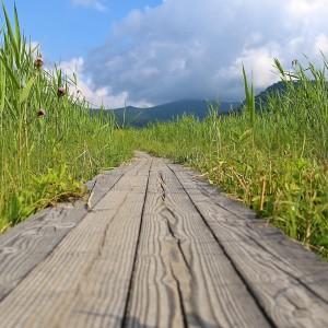 ozegahara_hiking_1