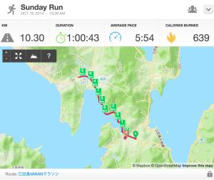 第29回ヒロシマMIKANマラソンコースマップ